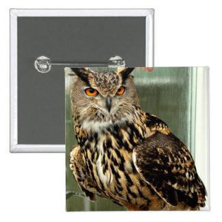 Long Eared Owl Pin