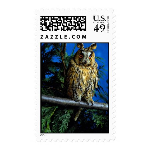 Long-eared owl postage stamps
