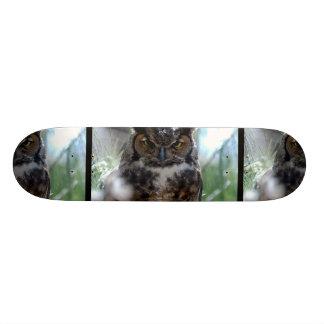 Long-Eared Owl Skate Board