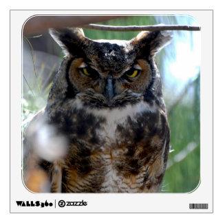 Long-Eared Owl Wall Graphics