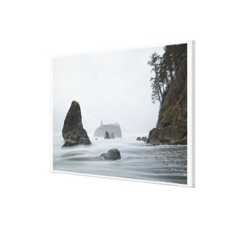 Long exposure of wave motion at Ruby Beach, Canvas Print