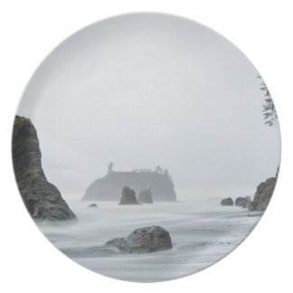 Long exposure of wave motion at Ruby Beach, Dinner Plate