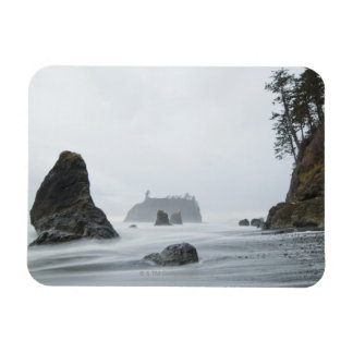 Long exposure of wave motion at Ruby Beach Vinyl Magnets