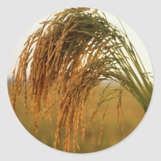 Long Grain Rice Classic Round Sticker