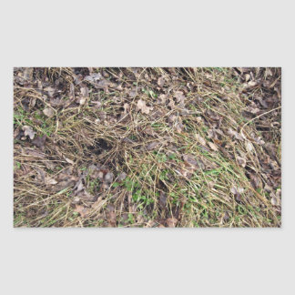 Long grass with leaves rectangular sticker