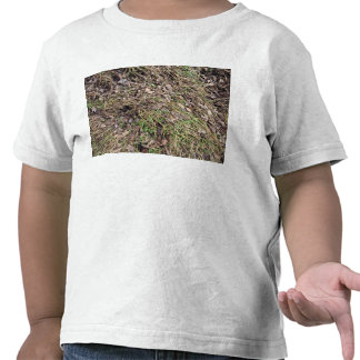 Long grass with leaves t-shirt