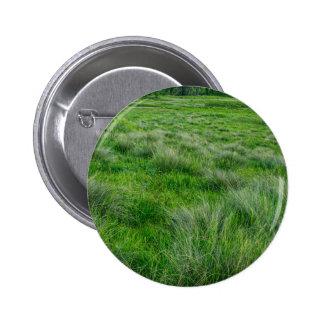 Long grasses in a vast grassland 2 inch round button
