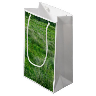 Long grasses in a vast grassland small gift bag