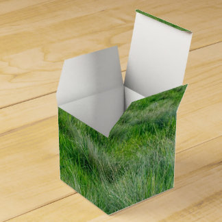 Long grasses in a vast grassland party favor box