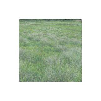 Long grasses in a vast grassland stone magnet
