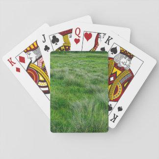 Long grasses in a vast grassland card deck