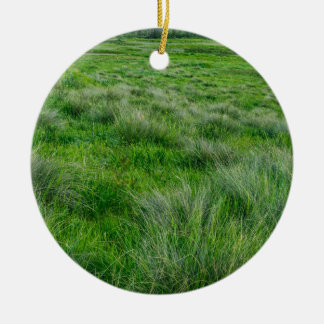 Long grasses in a vast grassland Double-Sided ceramic round christmas ornament