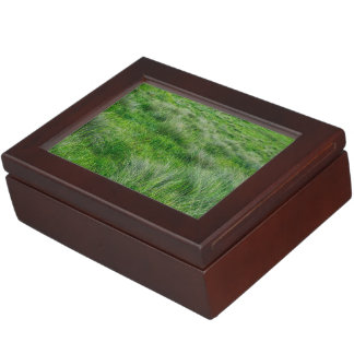 Long grasses in a vast grassland keepsake boxes