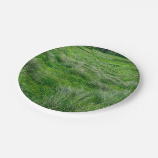 Long grasses in a vast grassland 7 inch paper plate