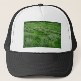Long grasses in a vast grassland trucker hat