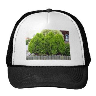 Long Green Grass Field Trucker Hat