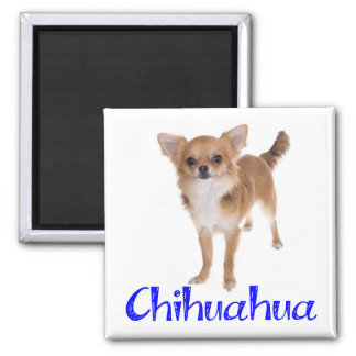 Long Hair Chihuahua Puppy Dog Magnet