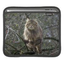 Long-hair Tabby Cat Animal Pet iPad Sleeve