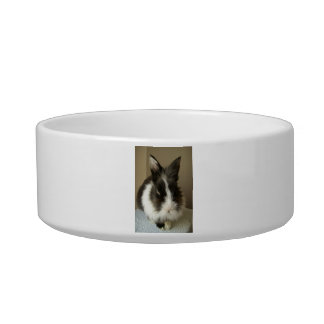 Long Haired Bunny Rabbit Pet Bowl