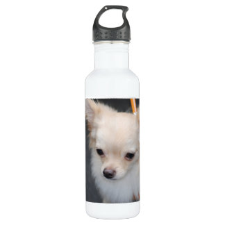 Long Haired Chihuahua 24oz Water Bottle