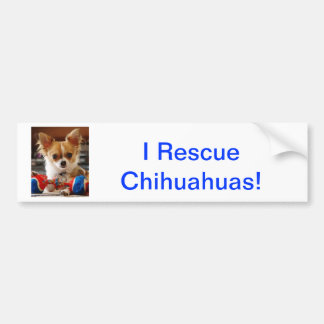 Long Haired Chihuahua Bumper Sticker