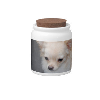 Long Haired Chihuahua Candy Jar
