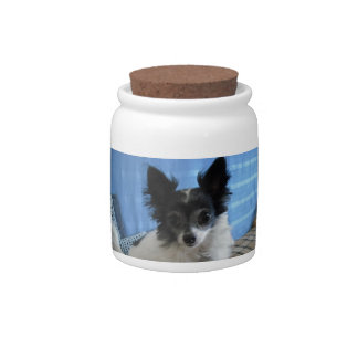 Long Haired Chihuahua Dog Treat Candy Jar