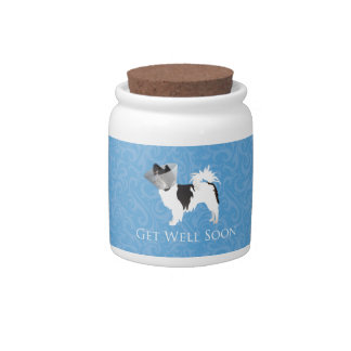 Long-haired Chihuahua Get Well Soon Design Candy Dish