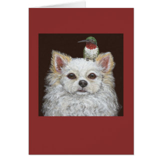 Long haired chihuahua greeting card