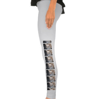 Long Haired Chihuahua Leggings