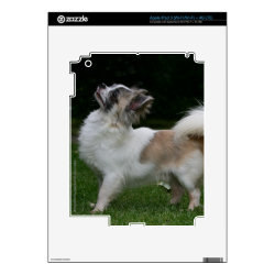 Amazon Kindle DX Skin with Chihuahua Phone Cases design