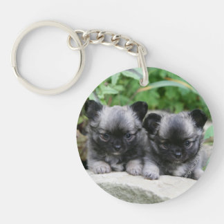 Long Haired Chihuahua Puppies Double-Sided Round Acrylic Keychain