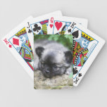 Long Haired Chihuahua Puppy Bicycle Playing Cards