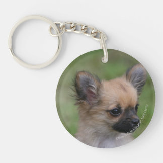 Long Haired Chihuahua Puppy Looking at Camera Double-Sided Round Acrylic Keychain