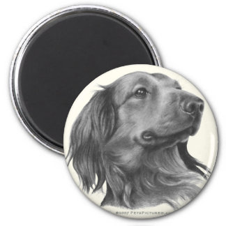 Long-Haired Dachshund 2 Inch Round Magnet