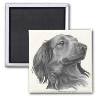 Long-Haired Dachshund 2 Inch Square Magnet