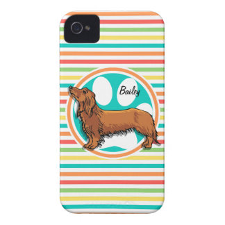 Long-haired Dachshund; Bright Rainbow Stripes iPhone 4 Case-Mate Case