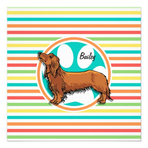Long-haired Dachshund; Bright Rainbow Stripes Personalized Invite