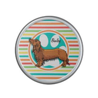 Long-haired Dachshund; Bright Rainbow Stripes Bluetooth Speaker