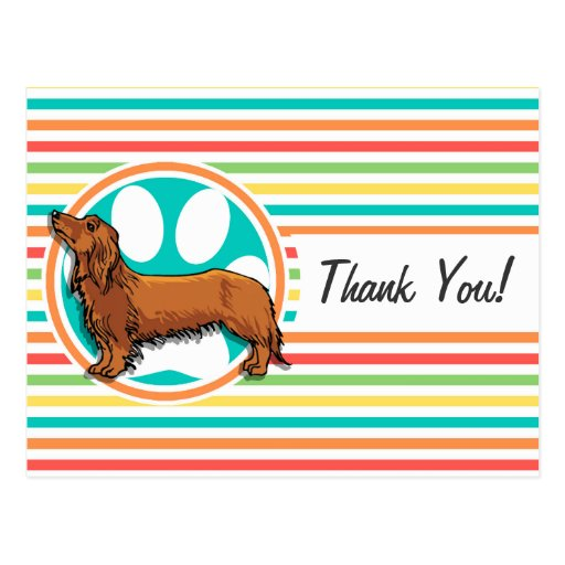 Long-haired Dachshund; Bright Rainbow Stripes Post Cards