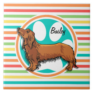 Long-haired Dachshund; Bright Rainbow Stripes Ceramic Tile