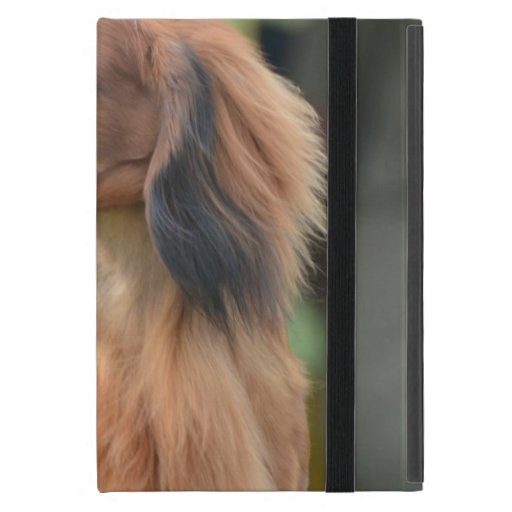 Long Haired Dachshund Cover For iPad Mini