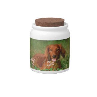Long Haired Dachshund Dog Treat Candy Jar