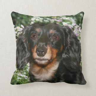 Long haired dachshund throw pillow