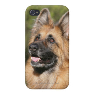 Long Haired German Shepherd 1 Covers For iPhone 4