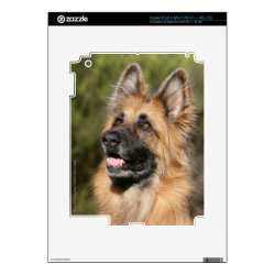 Long Haired German Shepherd 1 Skin For iPad 3