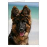 Long Haired German Shepherd Beach Greeting Card