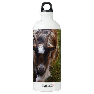 Long Haired Goat. Aluminum Water Bottle
