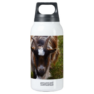 Long Haired Goat. Insulated Water Bottle
