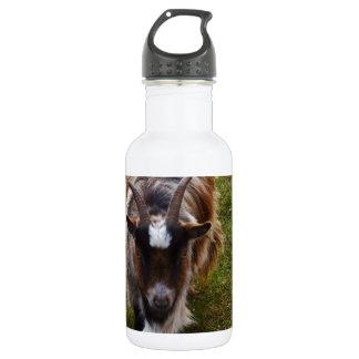 Long Haired Goat. Water Bottle